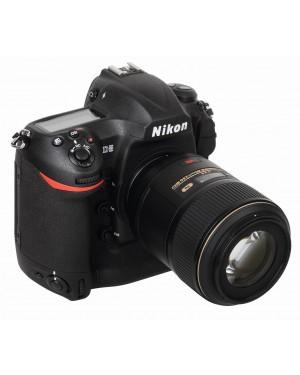 Nikon D5: Rasender Reporter