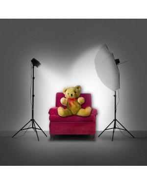 FOTO HITS Zwei-Jahres-Abo DIGITAL + Blitzset VisiLux Studiokit 130 von Reflecta